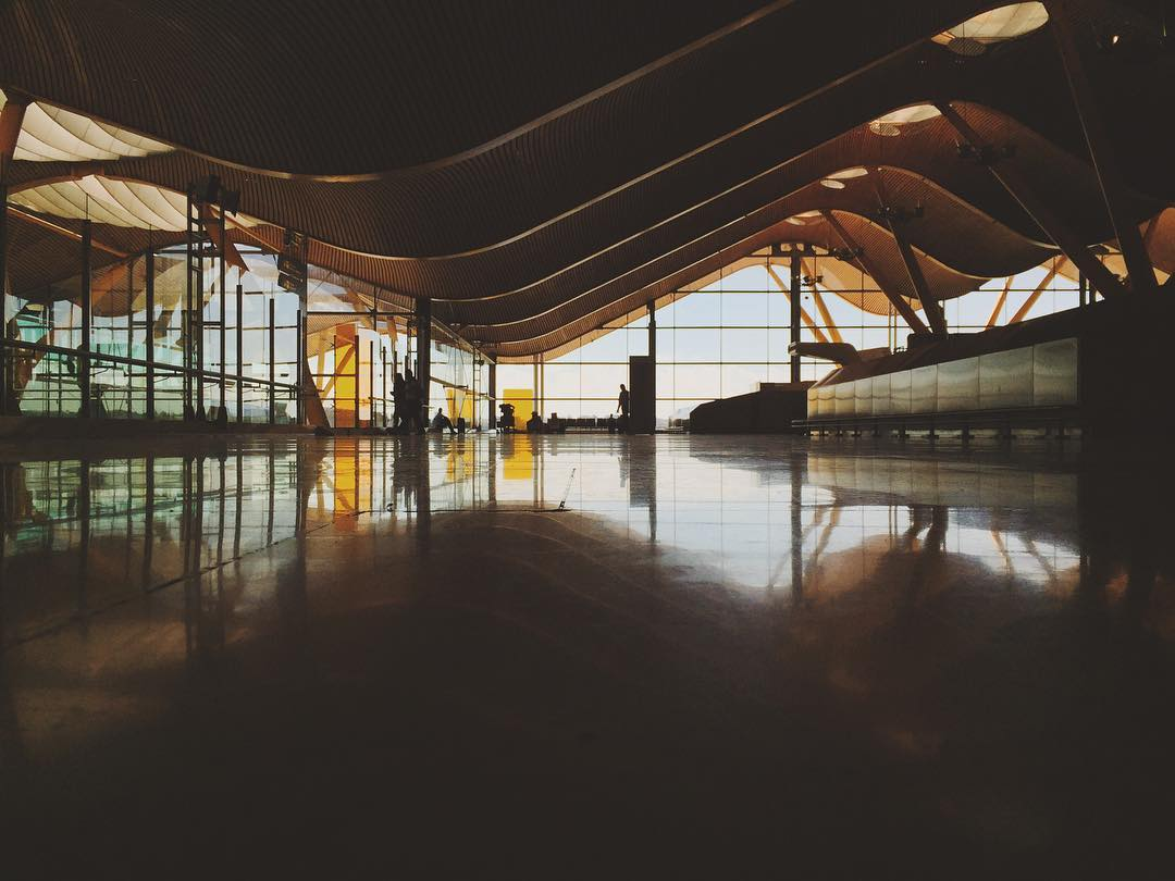 Curved wooden sculptural roof of an airport