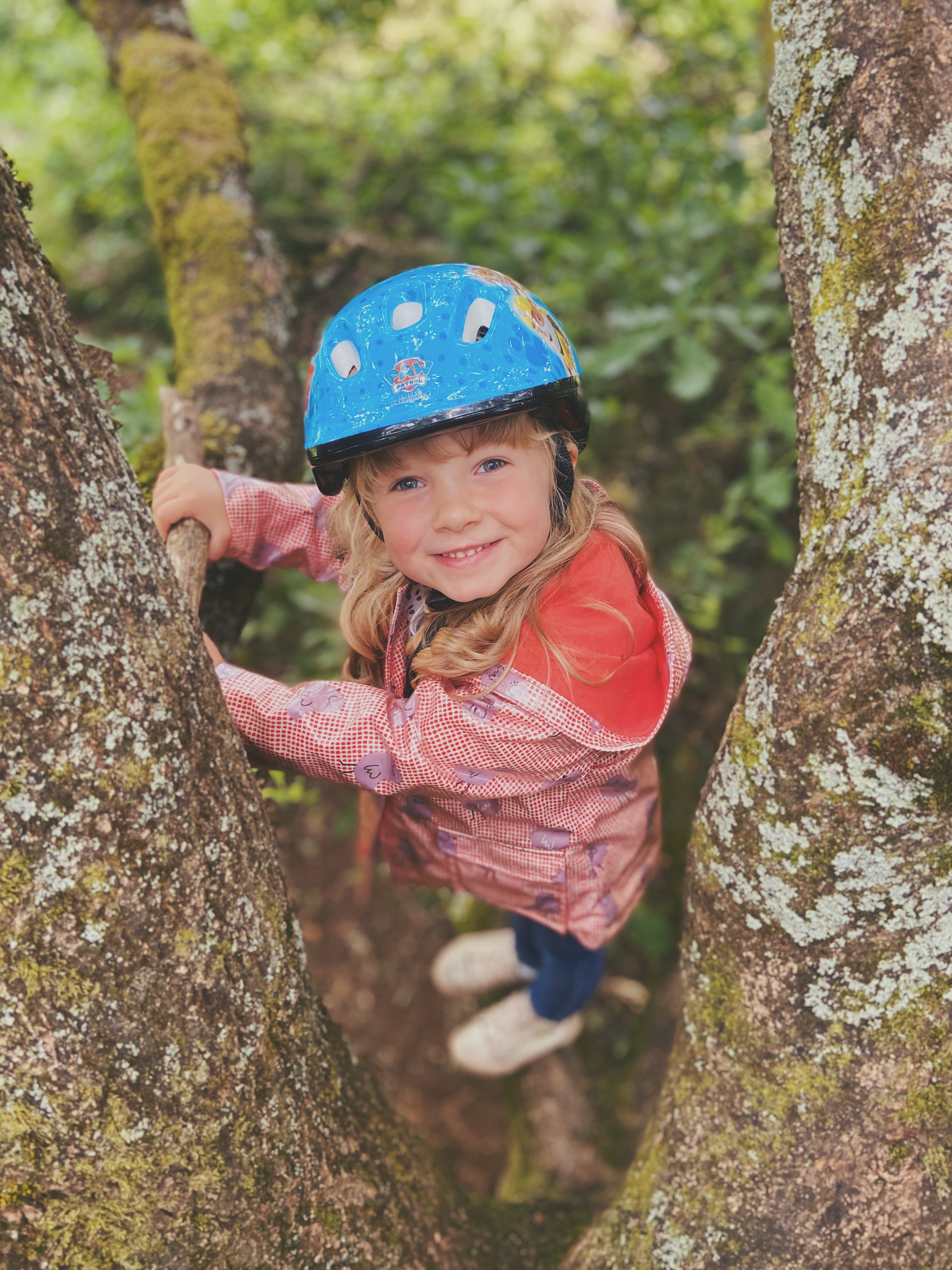 A little girl looks up at the camera whilst sat high in a tree